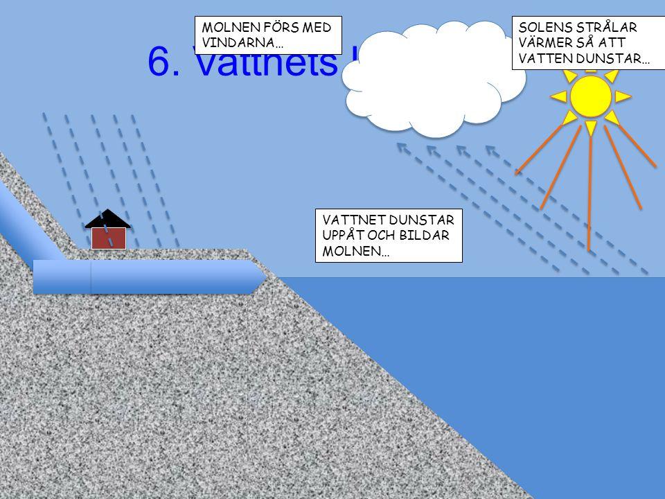 6. Vattnets kretslopp MOLNEN FÖRS MED VINDARNA…