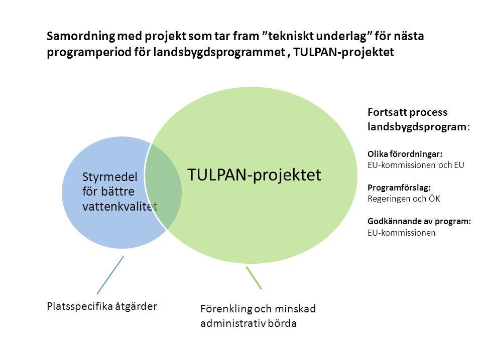 Samordning med projekt som tar fram tekniskt underlag för nästa programperiod för landsbygdsprogrammet , TULPAN-projektet