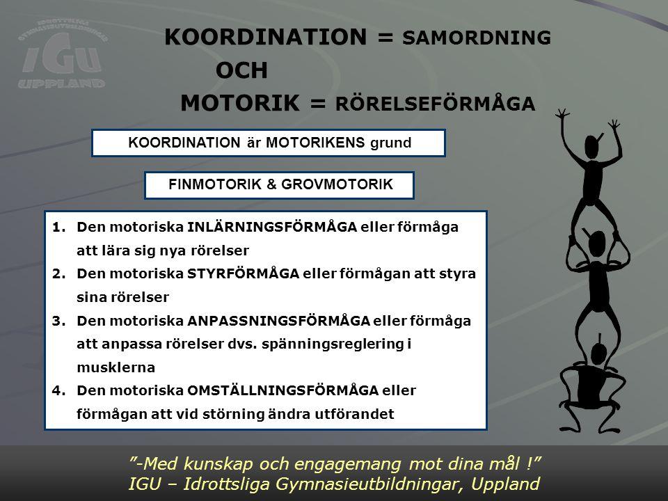 Bild 2 KOORDINATION = SAMORDNING MOTORIK = RÖRELSEFÖRMÅGA OCH