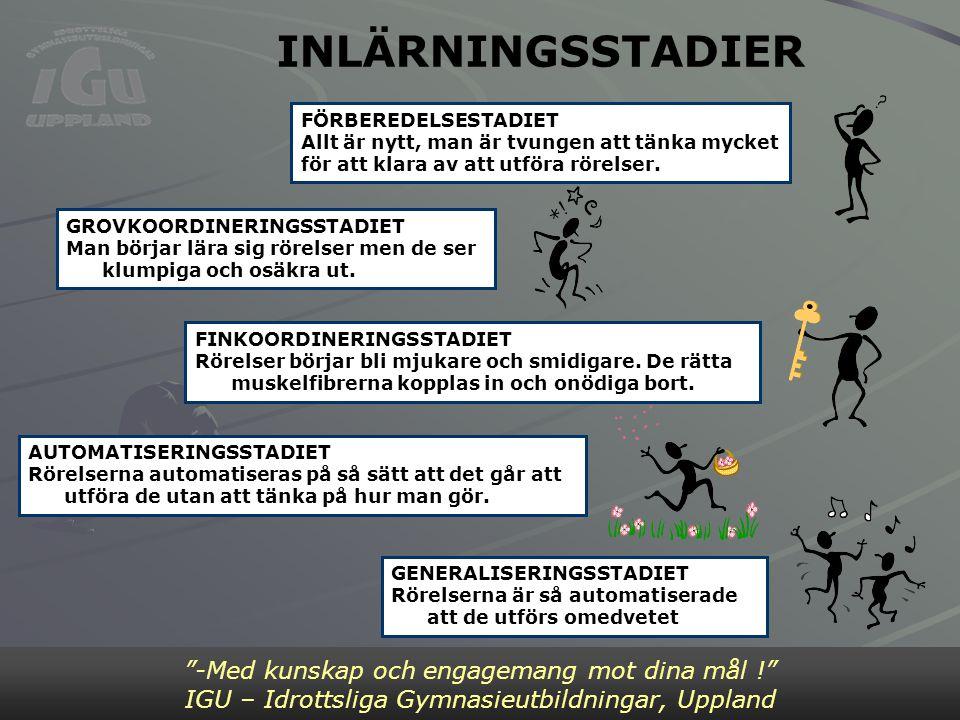 INLÄRNINGSSTADIER Bild 2 -Med kunskap och engagemang mot dina mål !