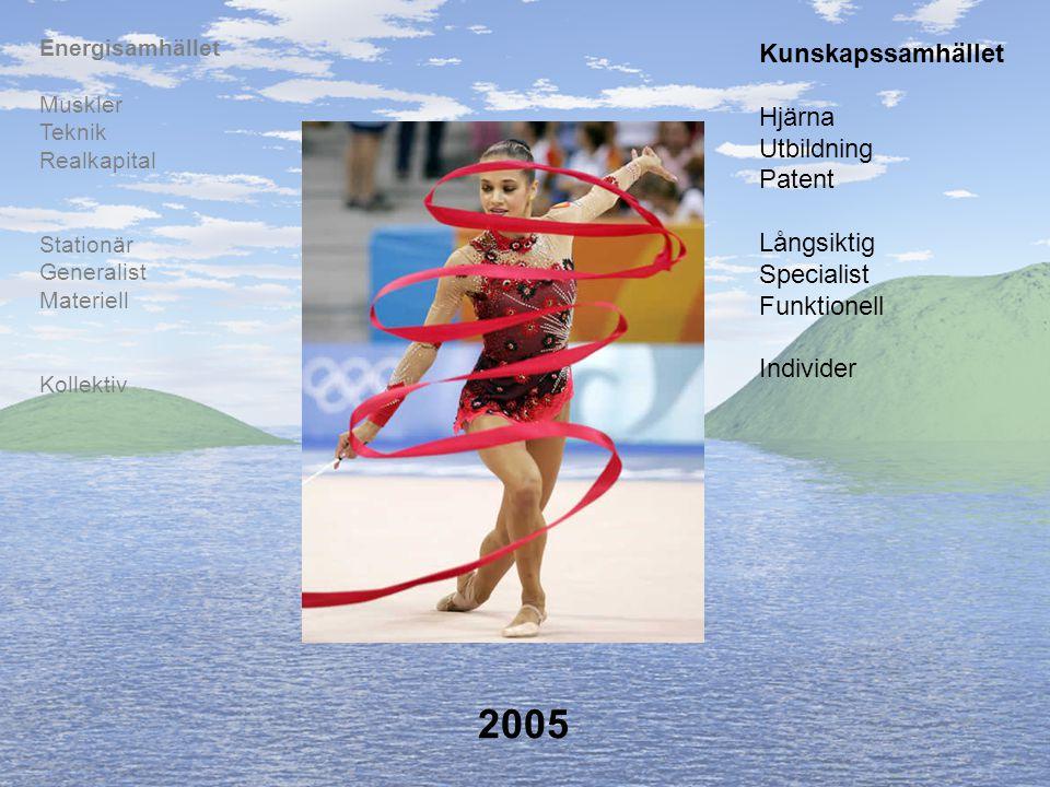 2005 Kunskapssamhället Hjärna Utbildning Patent Långsiktig Specialist