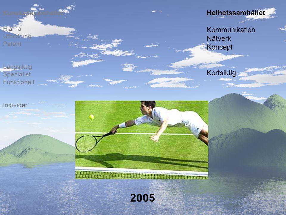 2005 Helhetssamhället Kommunikation Nätverk Koncept Kortsiktig
