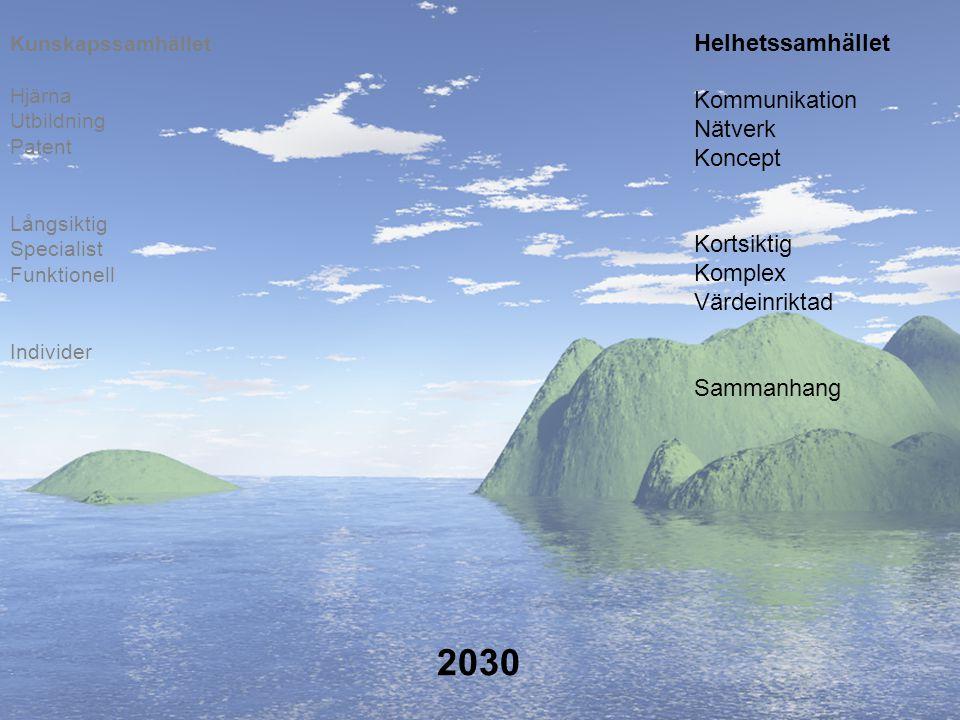 2030 Helhetssamhället Kommunikation Nätverk Koncept Kortsiktig Komplex