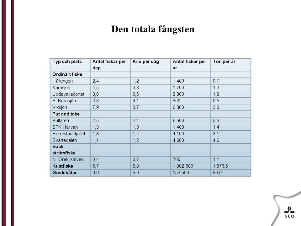 Den totala fångsten Typ och plats Antal fiskar per dag Kilo per dag