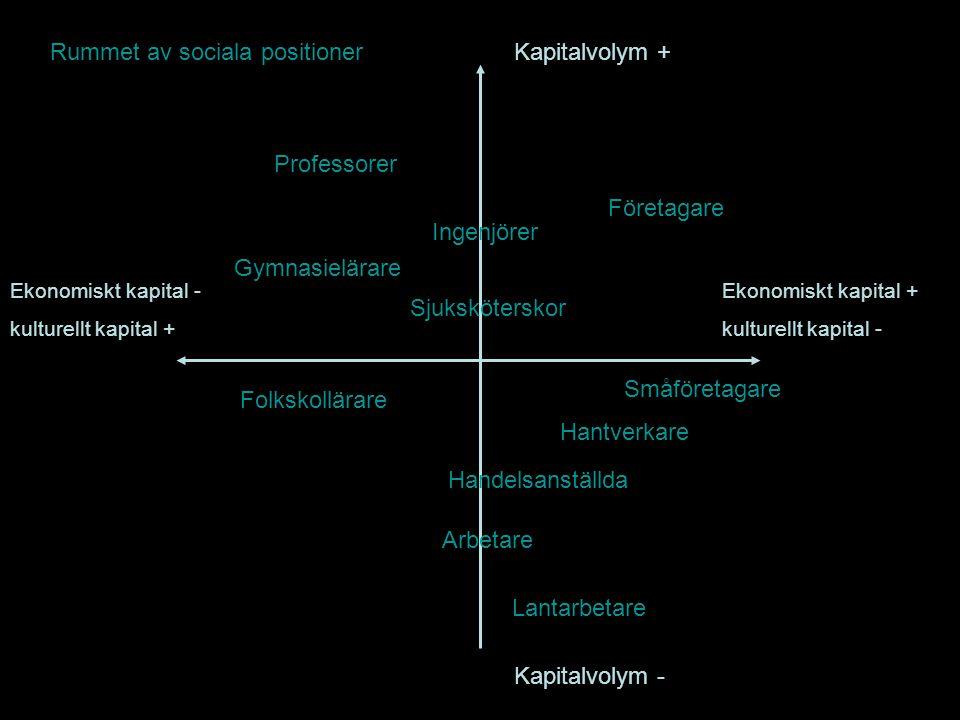 Rummet av sociala positioner Kapitalvolym +