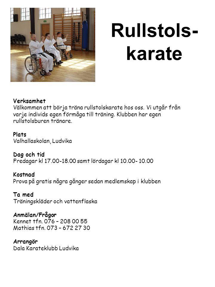 Rullstols- karate Verksamhet