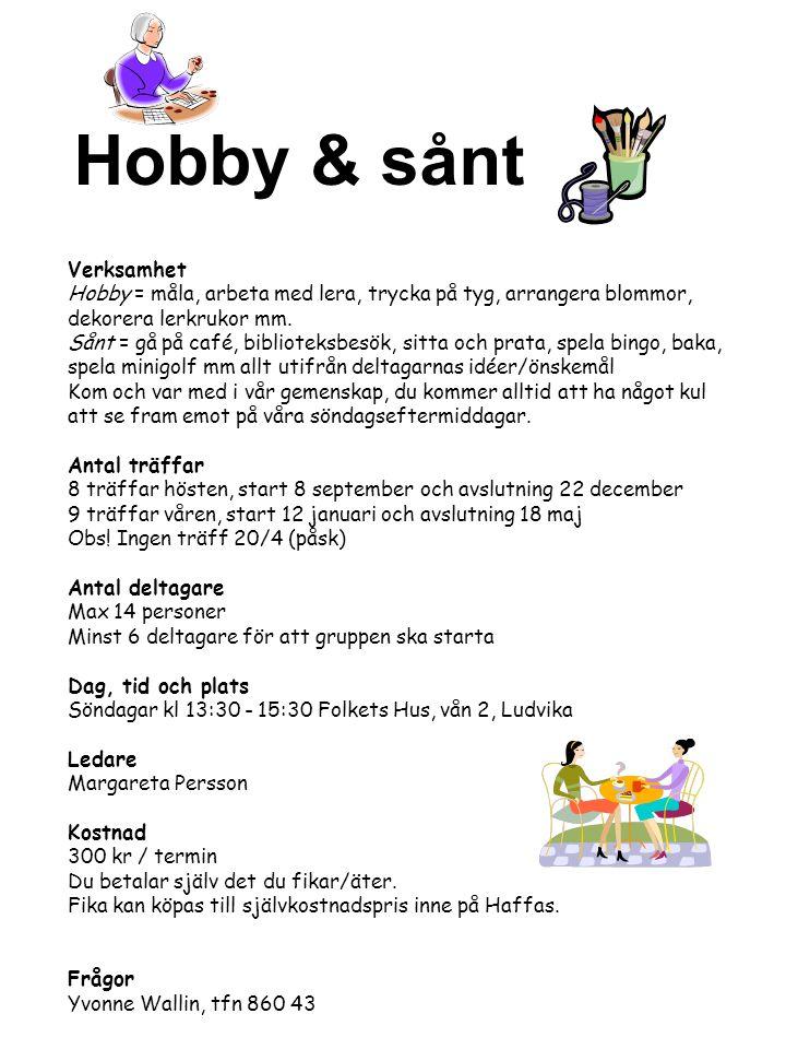 Hobby & sånt Verksamhet