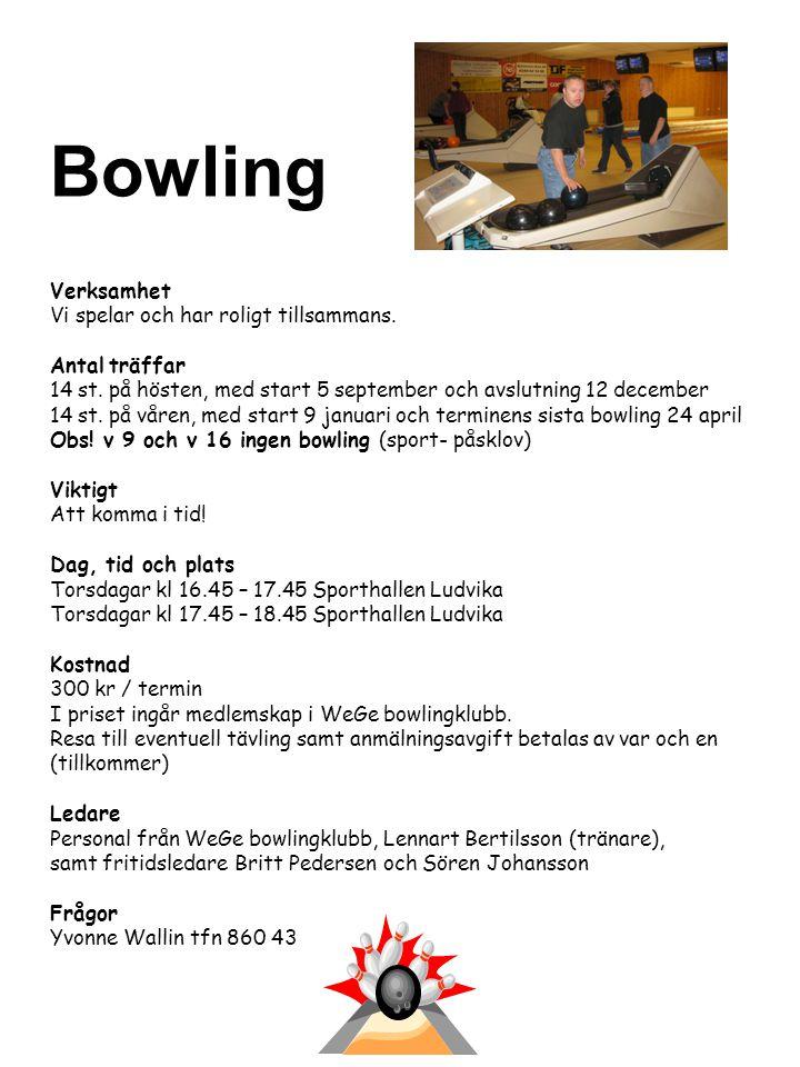 Bowling Verksamhet Vi spelar och har roligt tillsammans. Antal träffar