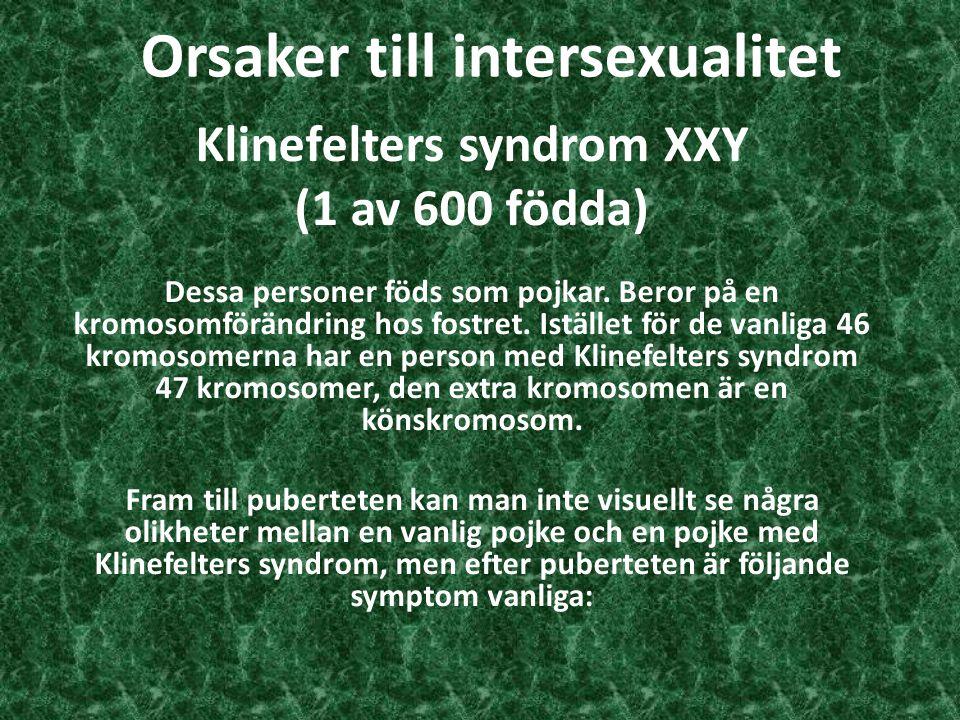 Orsaker till intersexualitet Klinefelters syndrom XXY