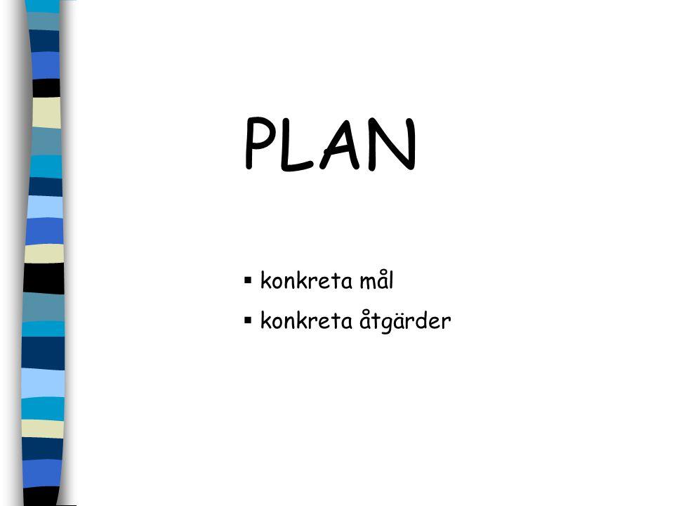 PLAN konkreta mål konkreta åtgärder