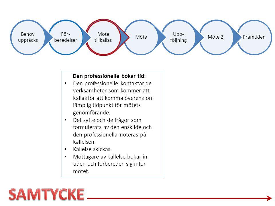 SAMTYCKE Den professionelle bokar tid: