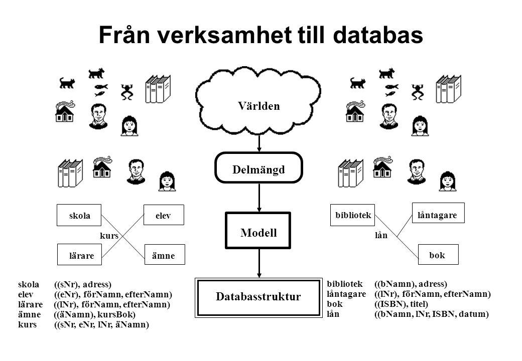 Från verksamhet till databas
