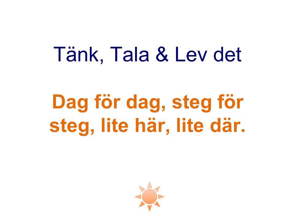 Tänk, Tala & Lev det Dag för dag, steg för steg, lite här, lite där.