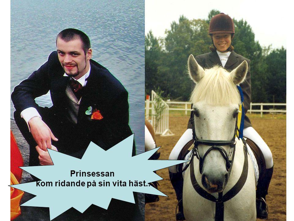 Prinsessan kom ridande på sin vita häst..