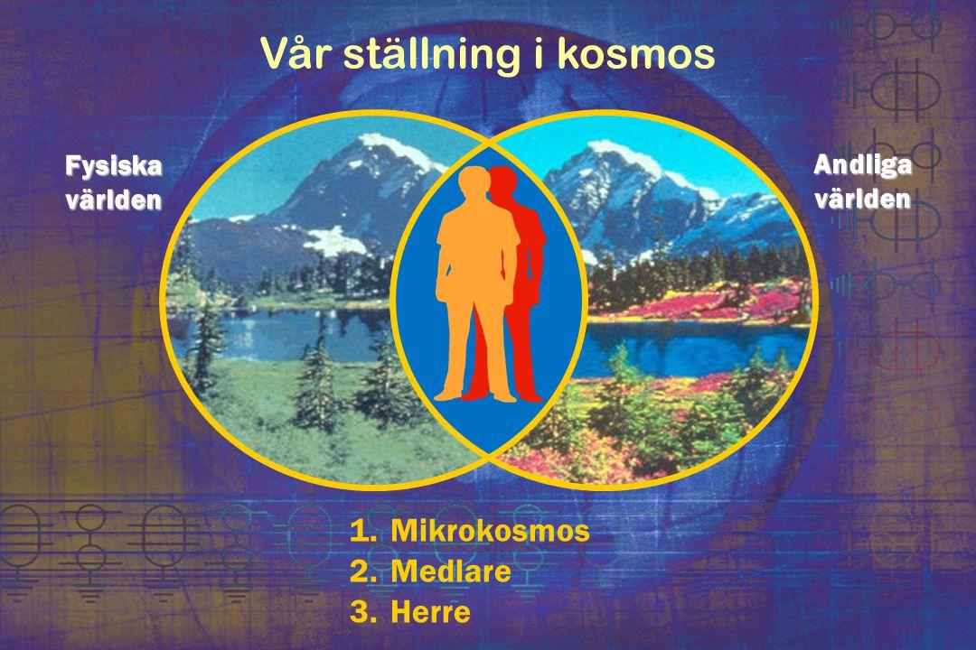 Vår ställning i kosmos Mikrokosmos Medlare Herre Fysiska världen