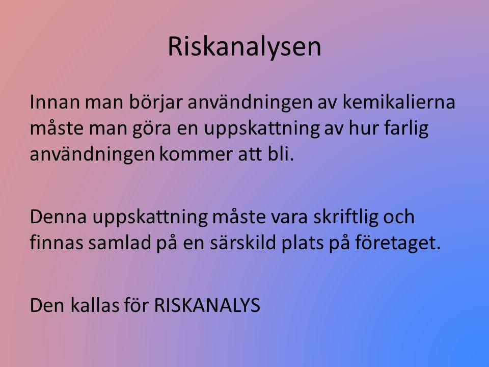 Riskanalysen