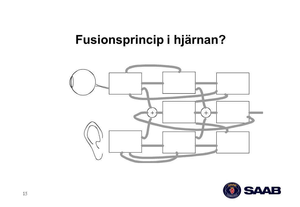 Fusionsprincip i hjärnan