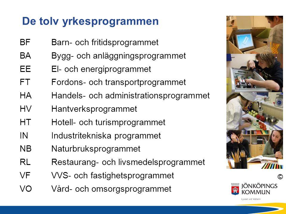 De tolv yrkesprogrammen