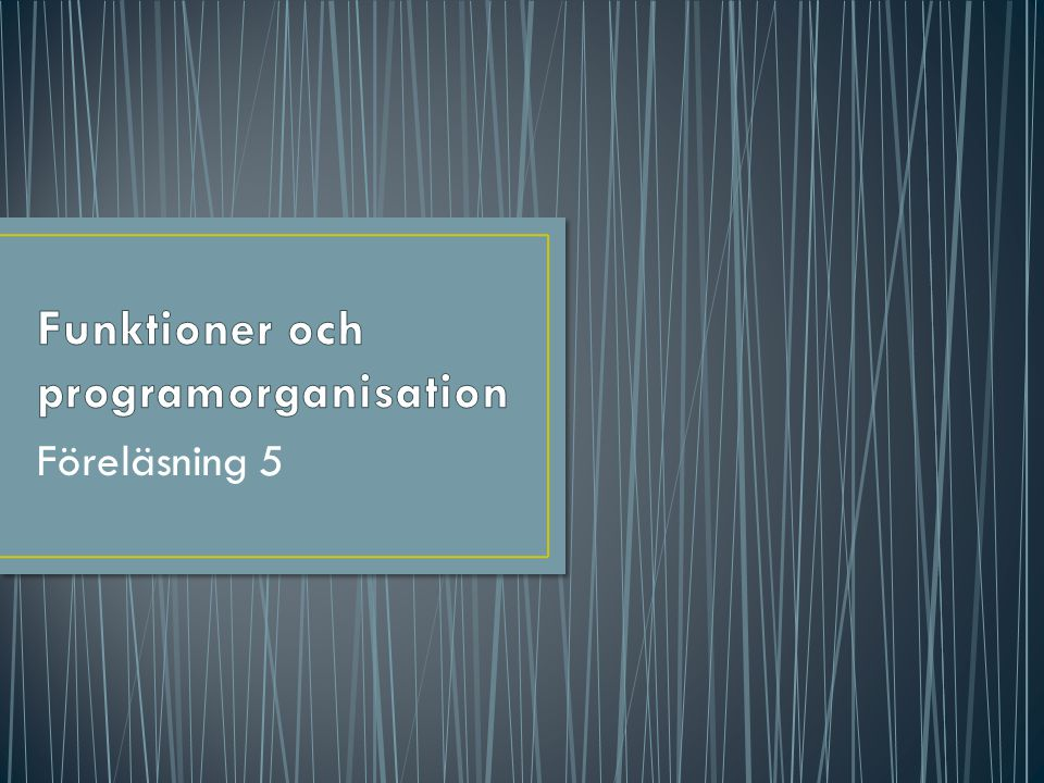 Funktioner och programorganisation