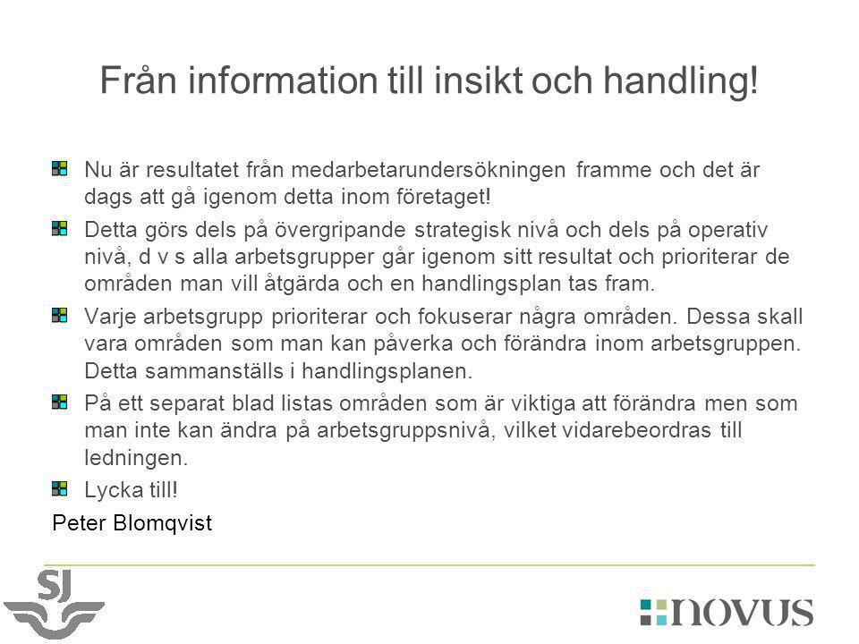 Från information till insikt och handling!