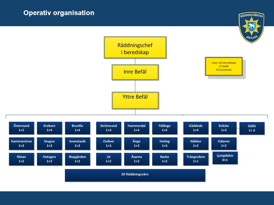 Operativ organisation