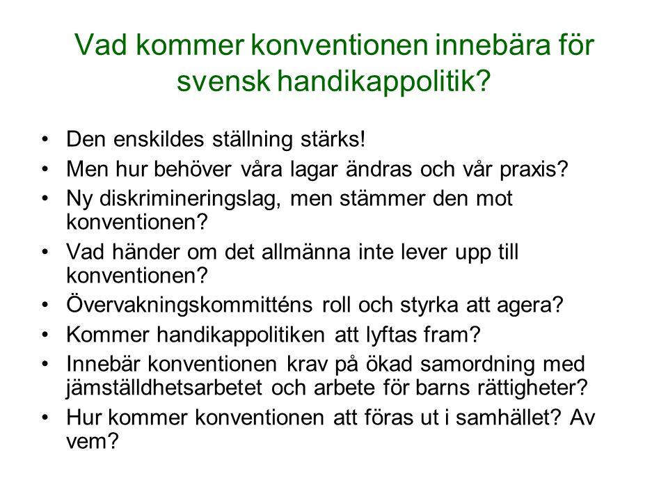 Vad kommer konventionen innebära för svensk handikappolitik