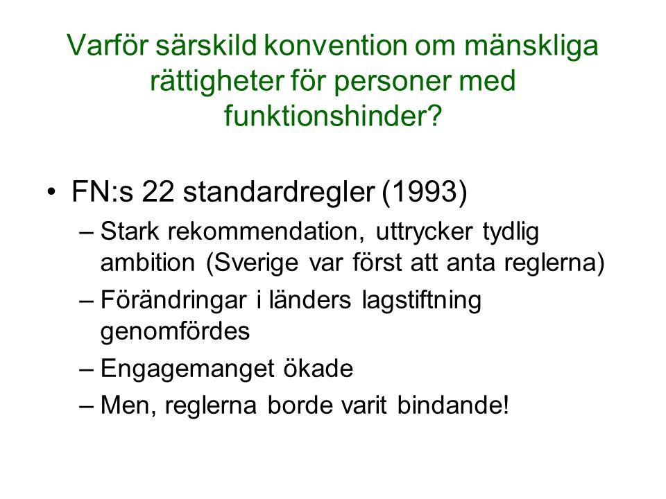 FN:s 22 standardregler (1993)