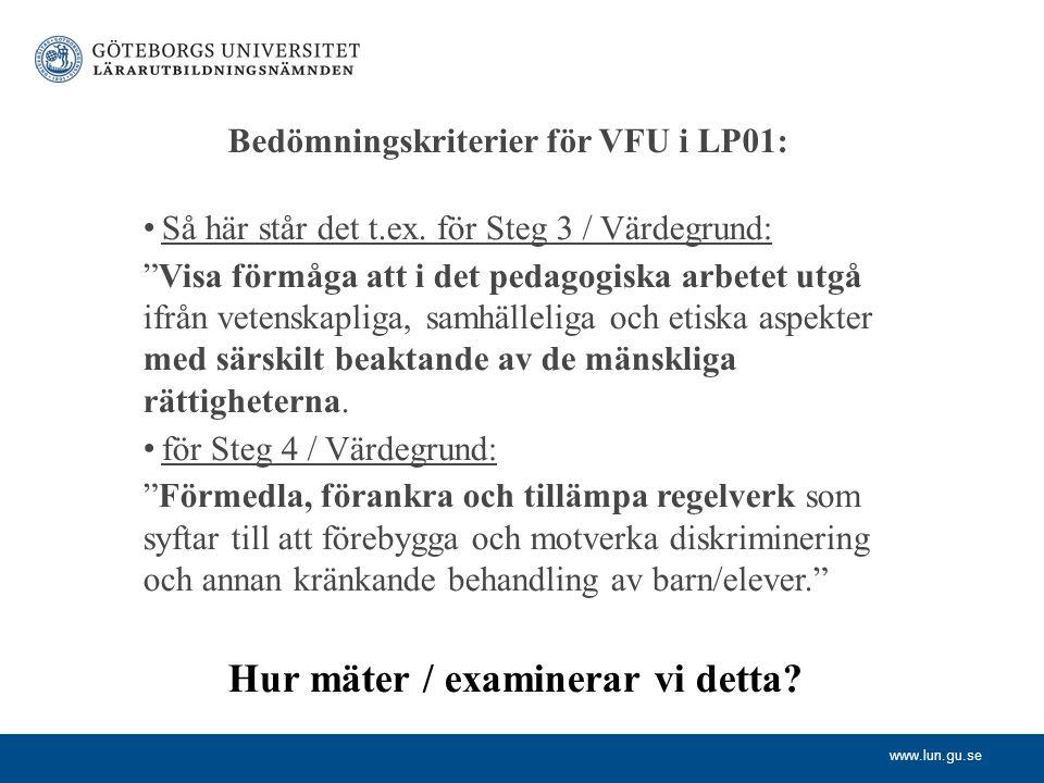 Bedömningskriterier för VFU i LP01: