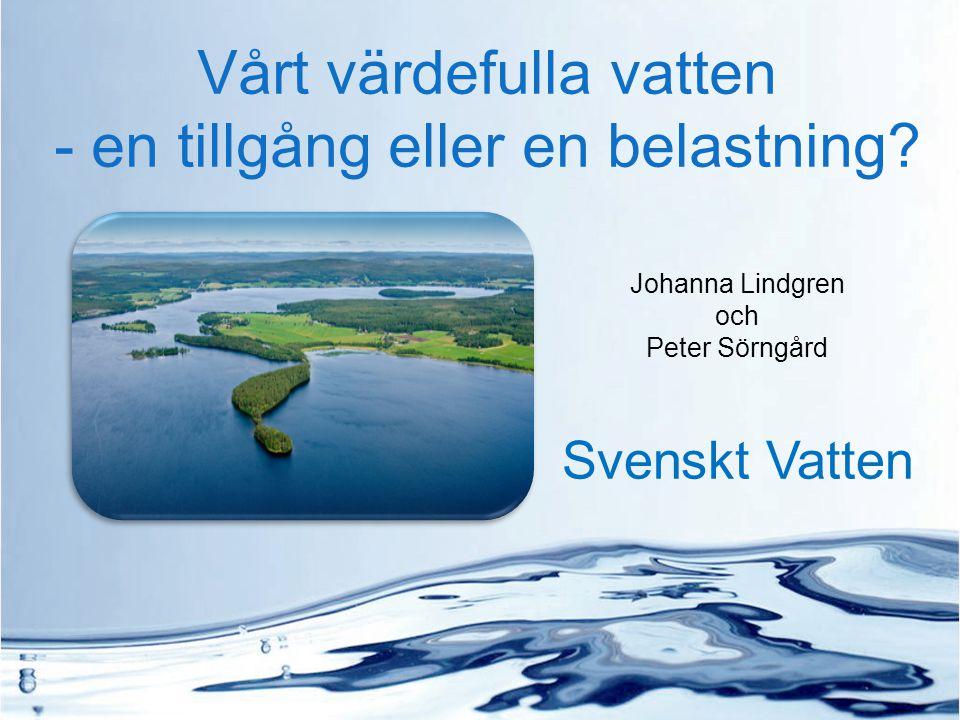 Vårt värdefulla vatten - en tillgång eller en belastning