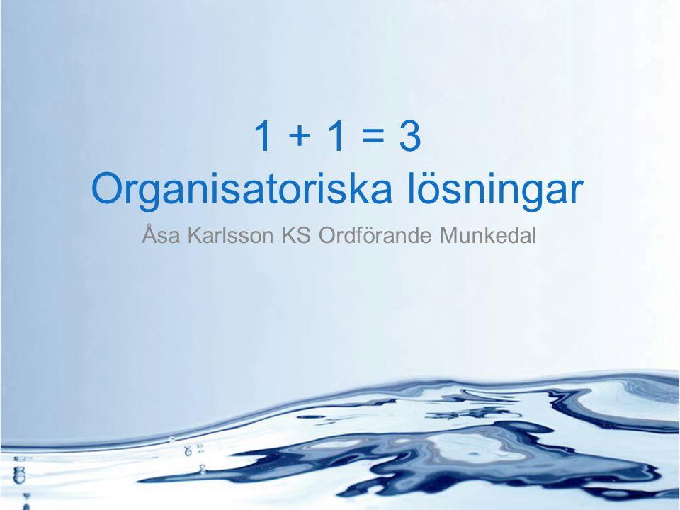 1 + 1 = 3 Organisatoriska lösningar