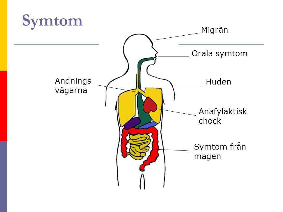 Symtom Migrän Orala symtom Andnings- vägarna Huden Anafylaktisk chock