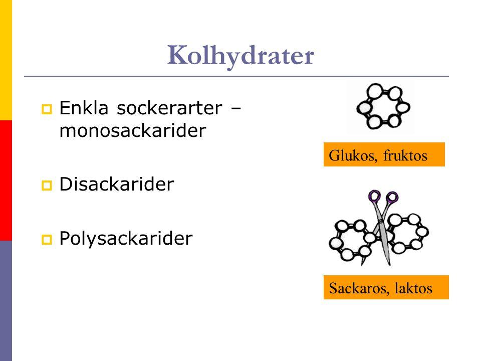 Kolhydrater Enkla sockerarter – monosackarider Disackarider