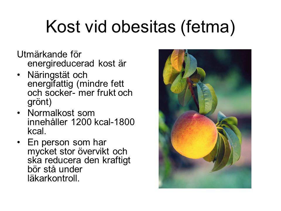 Kost vid obesitas (fetma)