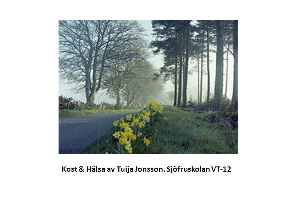 Kost & Hälsa av Tuija Jonsson. Sjöfruskolan VT-12