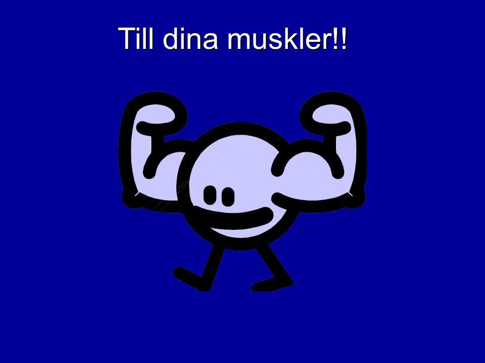 Till dina muskler!!