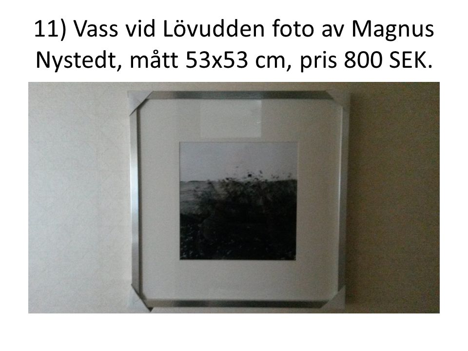 11) Vass vid Lövudden foto av Magnus Nystedt, mått 53x53 cm, pris 800 SEK.