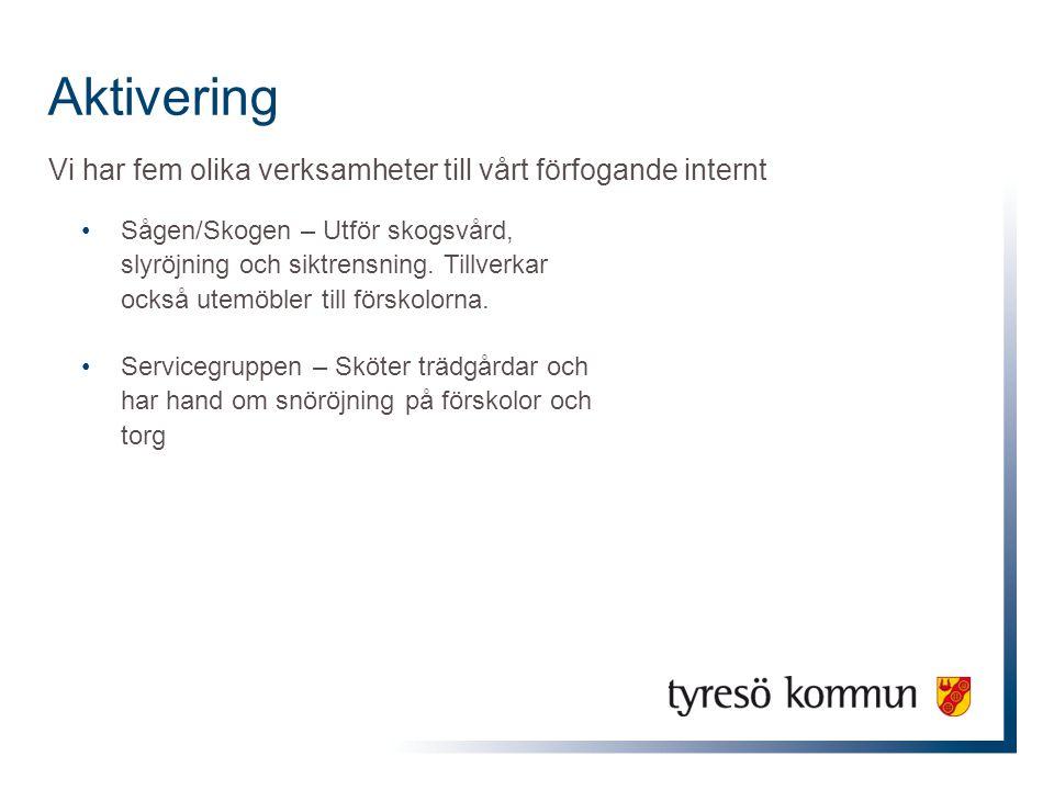 Aktivering Vi har fem olika verksamheter till vårt förfogande internt