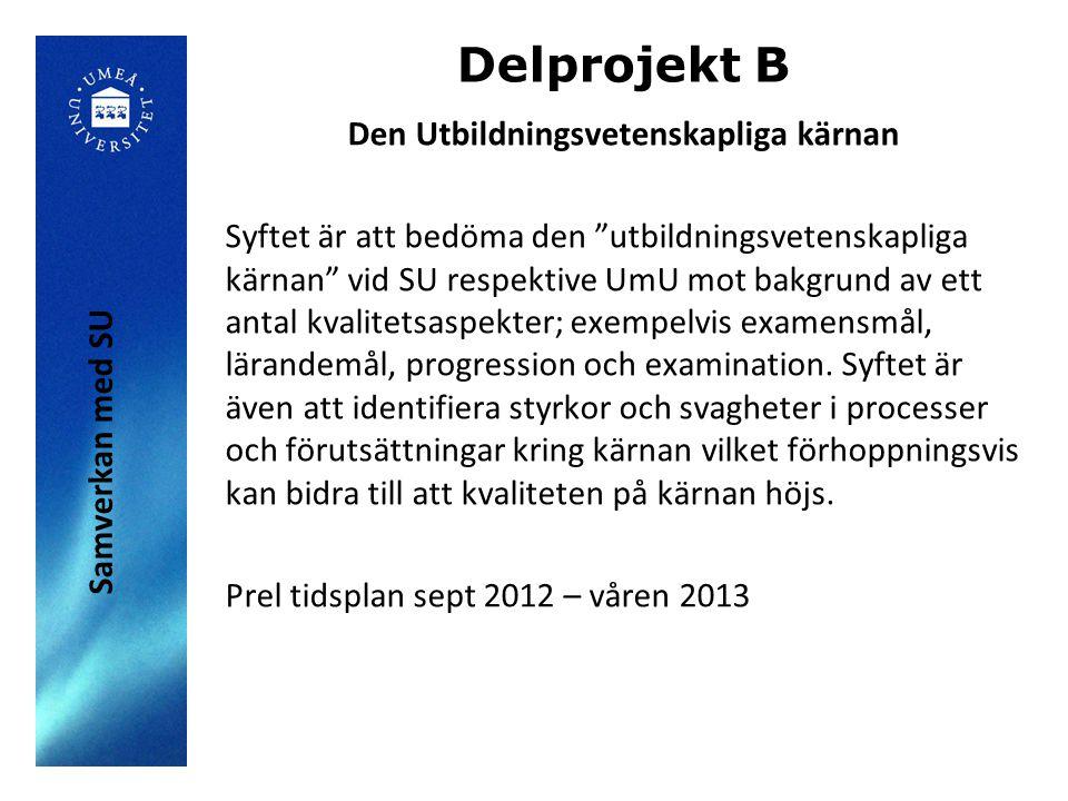 Delprojekt B