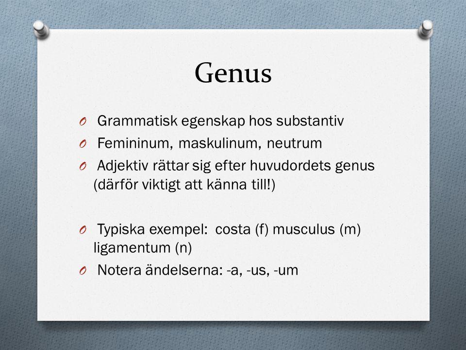 Genus Grammatisk egenskap hos substantiv