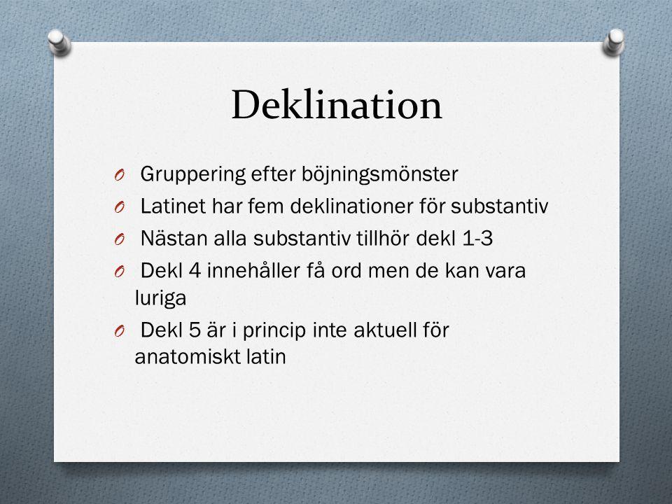 Deklination Gruppering efter böjningsmönster
