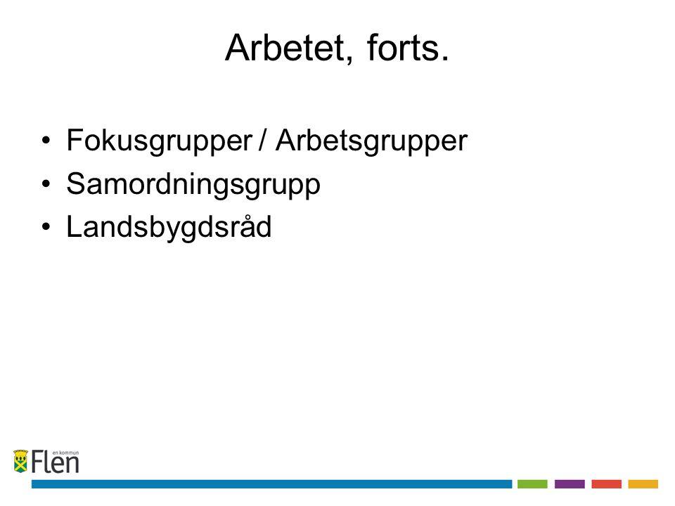 Arbetet, forts. Fokusgrupper / Arbetsgrupper Samordningsgrupp
