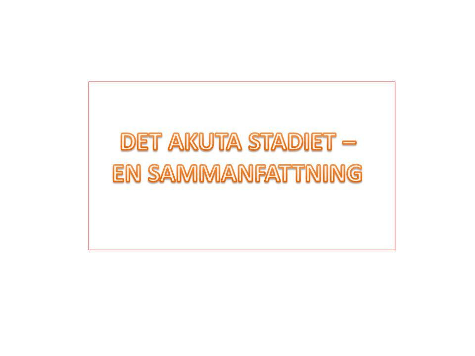 DET AKUTA STADIET – EN SAMMANFATTNING