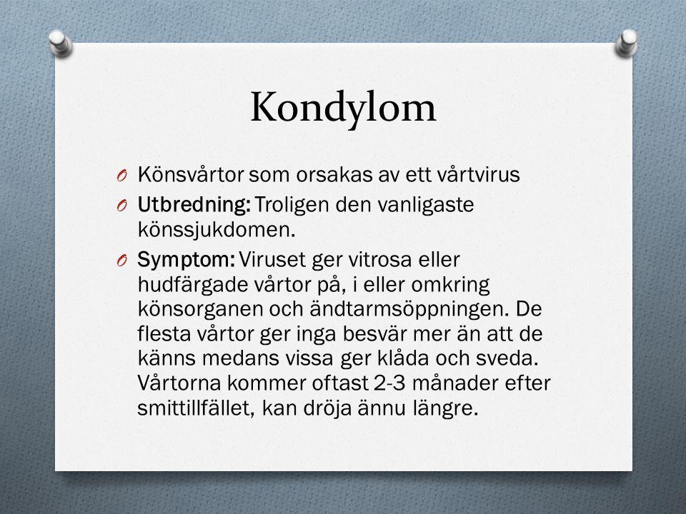 Kondylom Könsvårtor som orsakas av ett vårtvirus
