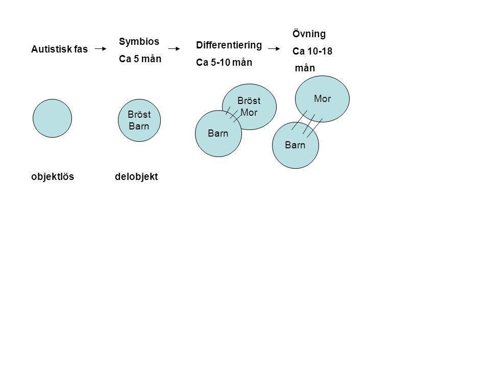 Övning Ca 10-18. mån. Symbios. Ca 5 mån. Differentiering. Ca 5-10 mån. Autistisk fas. Mor. Bröst.