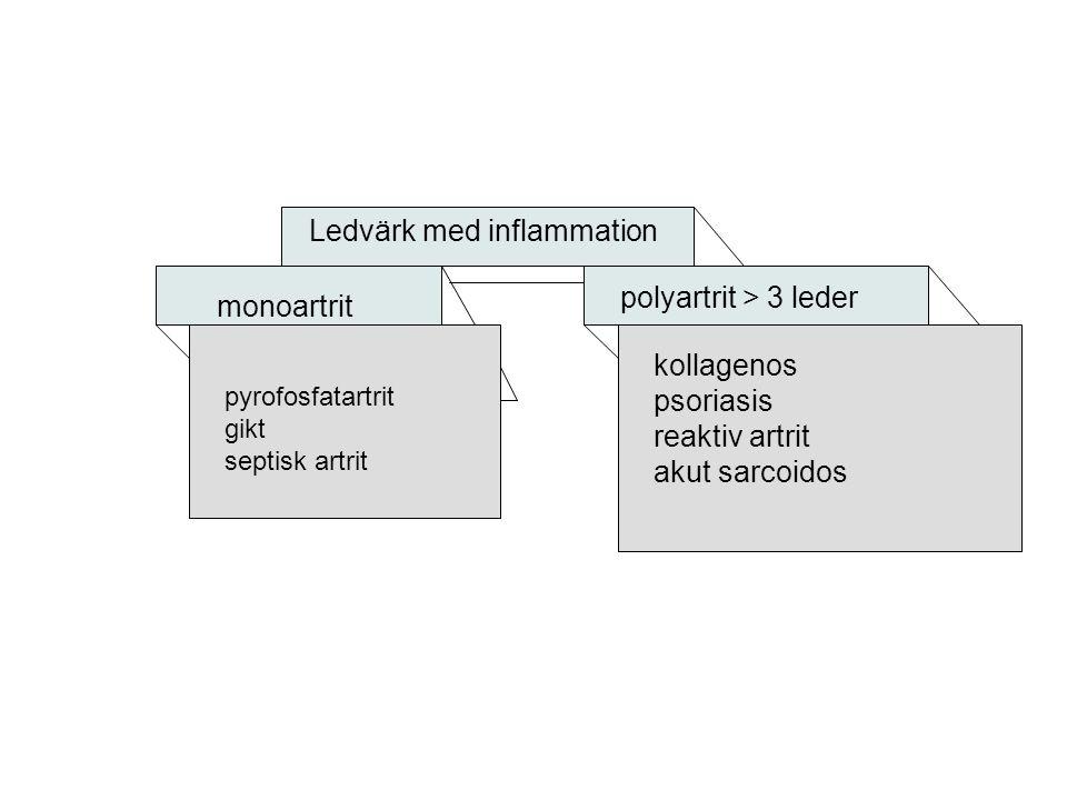 Ledvärk med inflammation