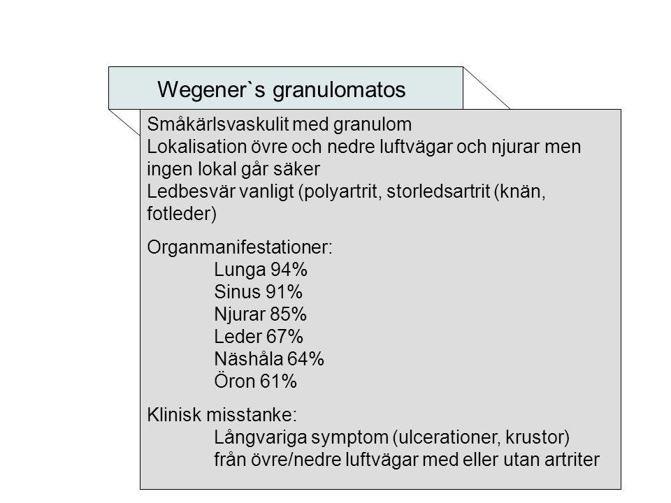 Wegener`s granulomatos