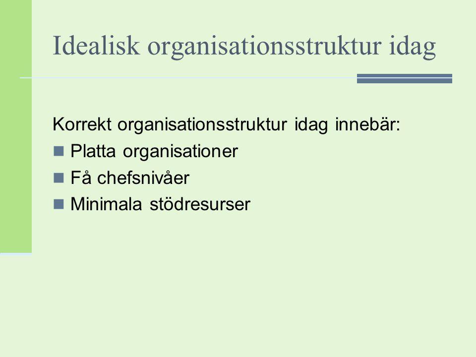 Idealisk organisationsstruktur idag