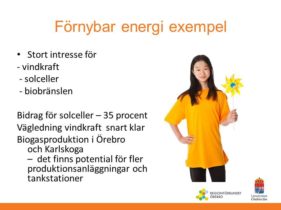Förnybar energi exempel