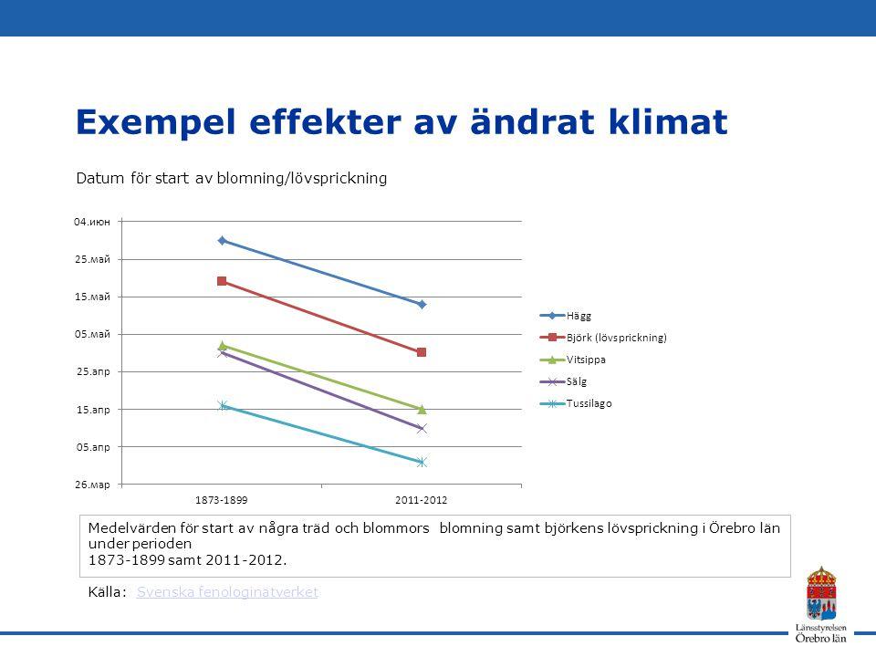 Exempel effekter av ändrat klimat