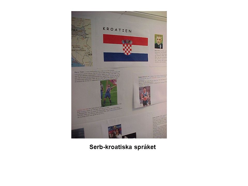 Serb-kroatiska språket
